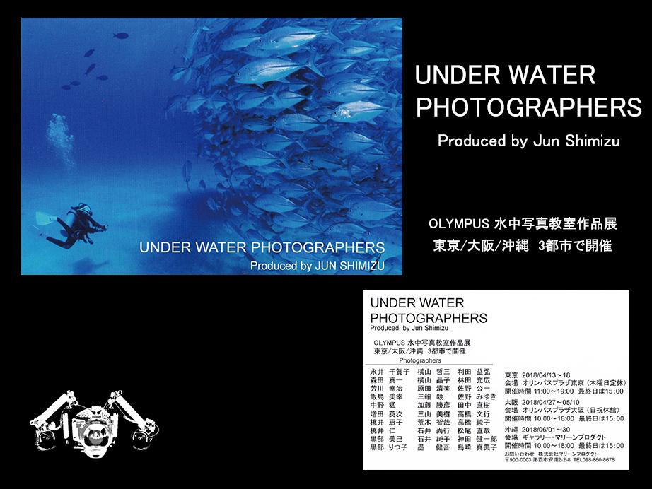 UNDERWATER PHOTOGRAPHERS_ジェイケーウェーブJKWave33