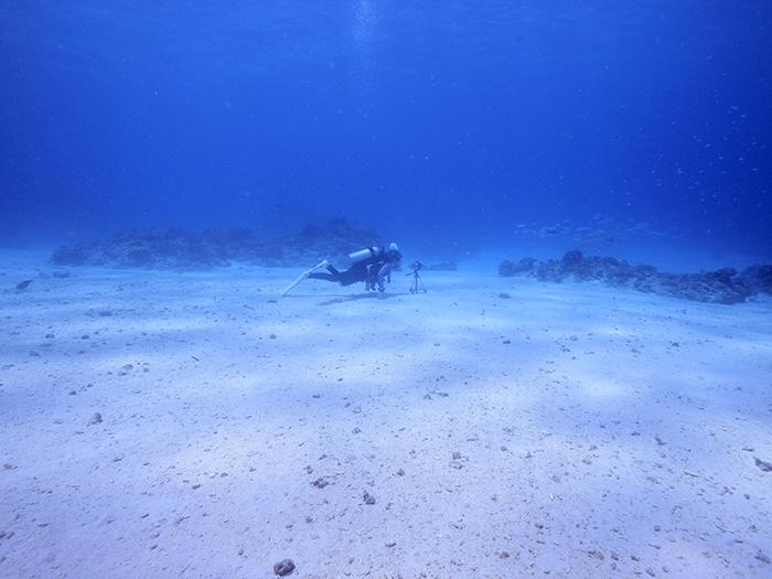 沖縄水中撮影