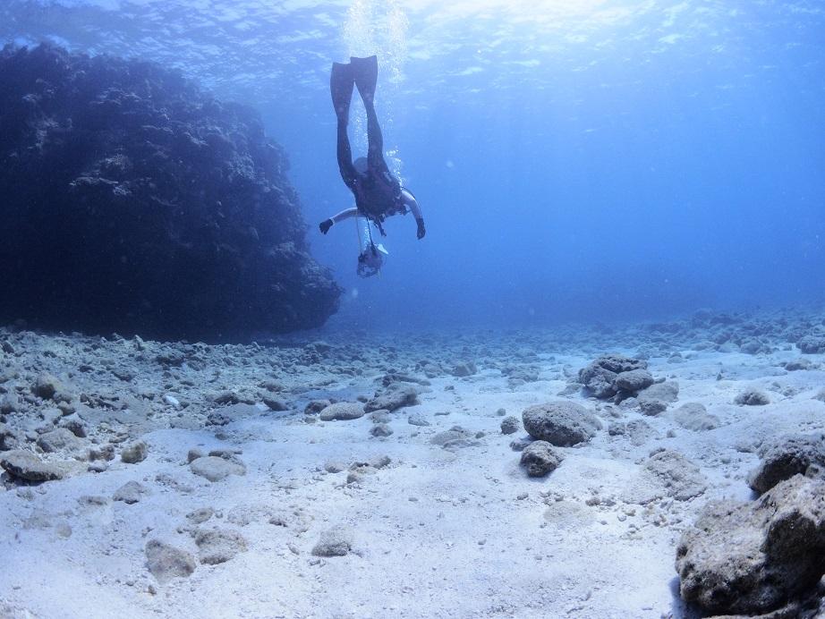 沖縄ダイビング マリンアクティビティ 水中撮影 ウミガメ ジェイケーウェーブ JK-Wave