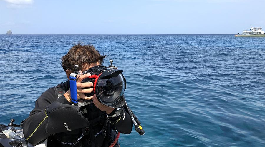 沖縄ハピメモ 沖縄那覇発わくわく体験ダイビングツアー