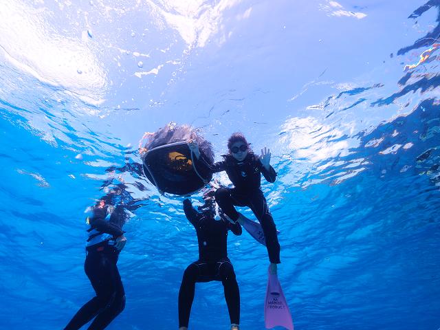 ジェイケ-ウェーブJK-Wave沖縄ドローン空撮付き体験ダイビング028